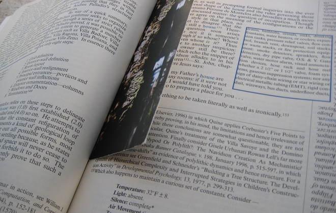 Cos'è la letteratura ergodica: definizione
