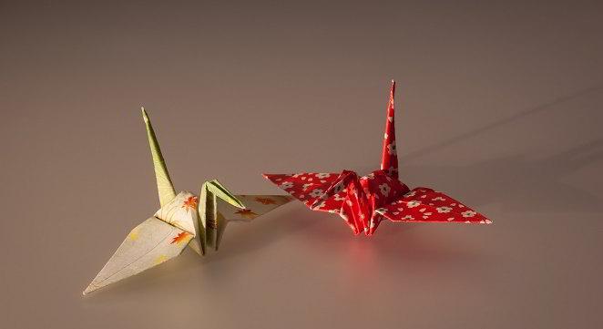 Libri origami: per bambini, modulari e 3D