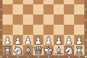 Migliori libri sugli scacchi per principianti