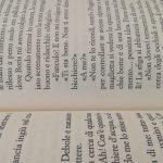 Libri aperti pagine