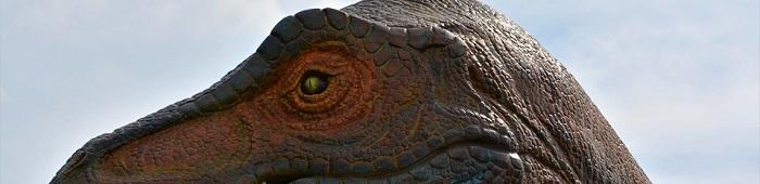 I migliori libri di dinosauri per bambini e ragazzi