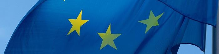 I manuali di diritto dell'Unione Europea 2019