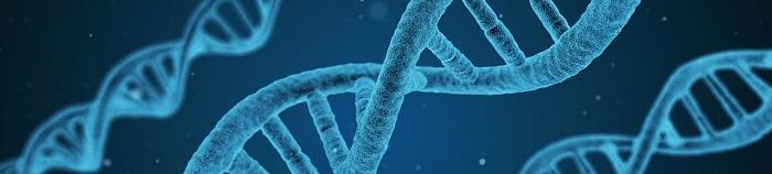 Test di ammissione a biotecnologie: i libri del 2020
