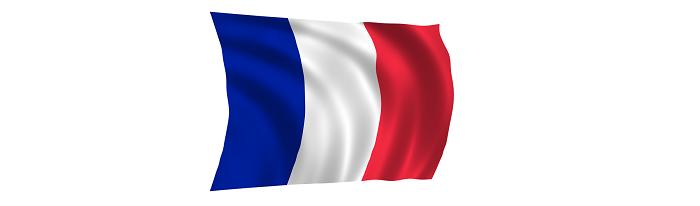 I migliori dizionari di francese