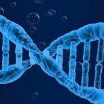 Libri di genetica e manuali universitari