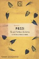Tu sei l'erba e la terra: recensione del libro di Antonia Pozzi