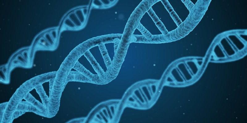 Biotecnologie: i migliori libri e manuali