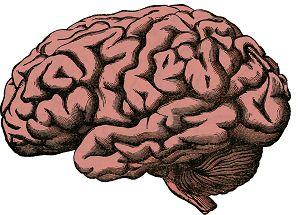libri e esercizi di psicometria