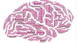 libri sulla neuroplasticità