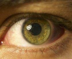 Libri e manuali di oculistica e oftalmologia