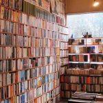 Libri belli da leggere e romanzi consigliati