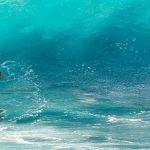 I migliori libri sul surf
