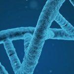 Test di ammissione a biotecnologie: i libri del 2019